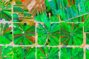 Deforestación en Bolivia captado por el satélite Sentinel 2