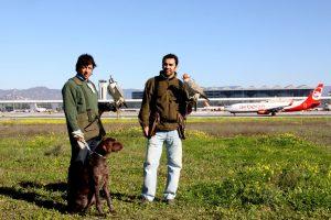 El Aeropuerto de Málaga acuerda medidas para mejorar la seguridad aérea