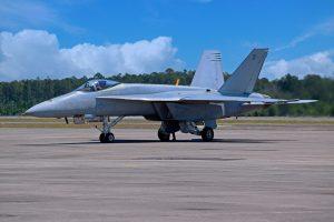 Super Hornet, Blue Angel, Boeing, US Navy